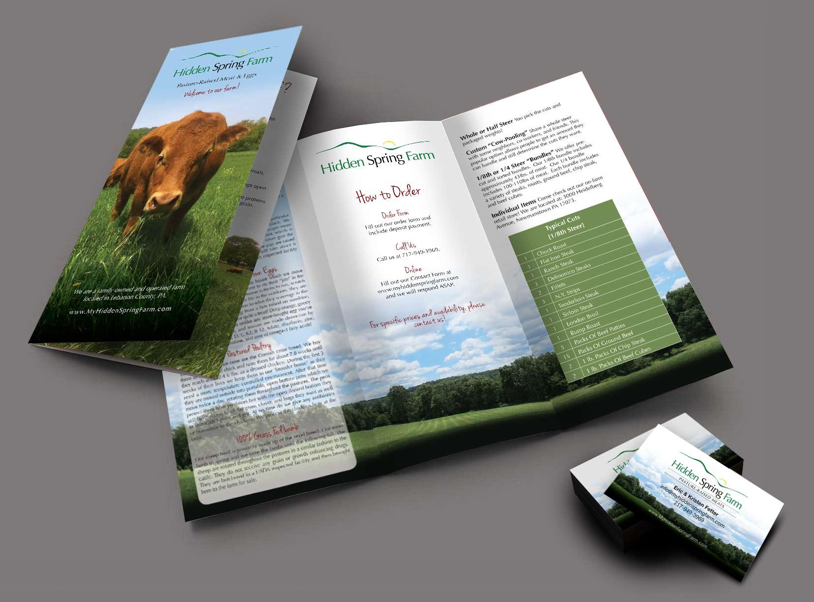 Brochure Design - Business Card Design